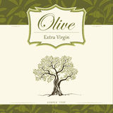 Olive tree. Olive oil. Vector  olive tree.For labe Royalty Free Stock Images