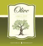 Olive tree. Olive oil. Vector  olive tree.For labels, pack. Stock Photo