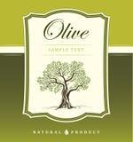 Olive tree. Olive oil. Vector olive tree. For labels, pack. Olive tree on vintage paper. Olive oil. Vector olive tree. For labels, pack Stock Illustration