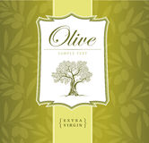 Olive tree. Olive oil. Vector  olive tree.For labels, pack. Stock Images