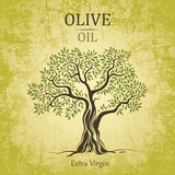 Olive Tree. Olive Oil. Vector Olive Tree On Vintag Royalty Free Stock Photo