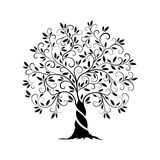 Olive tree outline curl silhouette. Icon isolated on white background. Web graphics stroke modern vector sign.Premium quality illustration logo design concept Royalty Free Stock Photos