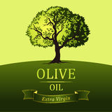 Olive tree. Vector green tree.yellow green leaves Stock Image
