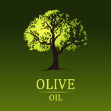 Olive tree. Vector green tree.yellow green leaves Royalty Free Stock Photo