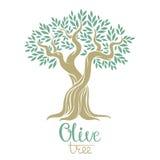 Olive tree vector illustration. Royalty Free Stock Photo