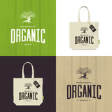 Olive tree vector logo concept isolated on green, white and brown background. Stock Image