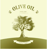 Olive tree. Vector oil . For labels, pack. Royalty Free Stock Photo