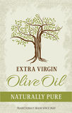 Olive tree vintage label. Vector design. Royalty Free Stock Photos
