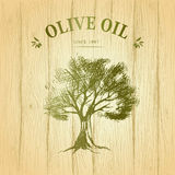 Olive tree on wood paper. Olive oil. Vector Royalty Free Stock Image