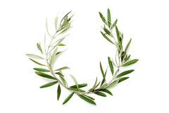 Olive tree wreath Royalty Free Stock Images