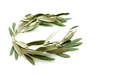 Olive tree wreath Royalty Free Stock Image
