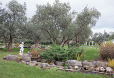 Olive trees and ancient sculpture in an exotic park. In high quality Royalty Free Stock Image