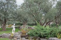 Olive trees and ancient sculpture in an exotic park. In high quality Royalty Free Stock Photos
