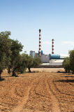 Olive trees and factory Stock Image