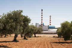 Olive trees and factory Royalty Free Stock Image