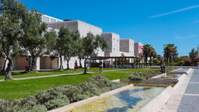 Olive-Trees Garden in CCB - Centro Cultural de Belem stock video