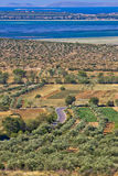 Olive trees grove and Vrana lake Stock Photography