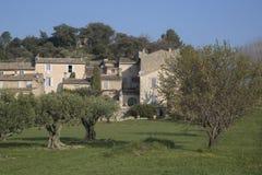 Olive Trees in Lourmarin, Provence, France. Europe Stock Photo