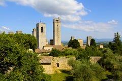 Olive Trees och torn, Tuscany, Italien arkivbild