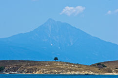 Olive trees on a small island in front of the holy mountains Athos Royalty Free Stock Photography
