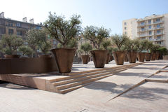 Olive trees of the square Villeneuve Bargemon Stock Photography