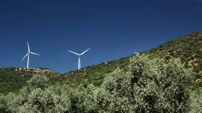 Olive trees and wind power stock video