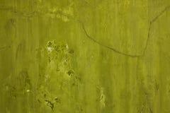 olive vägg Royaltyfria Bilder