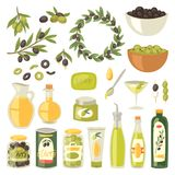 Olive vector oliveoil bottle with virgin oil and olivaceous ingredients for vegetarian food illustration set of. Olivebranch or olivet for wreath isolated on Stock Photos