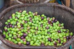 Olive verdi e nere appena raccolte in un canestro di legno da vendere al mercato di Sineu, Maiorca Immagini Stock Libere da Diritti