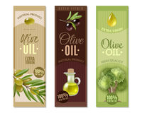 Olive Vertical Banners Set Images libres de droits