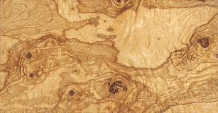 Olive wood. Natural texture background Stock Photography