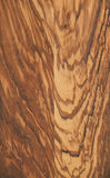Olive wood texture. Close up of a fine olive wood texture Royalty Free Stock Images