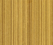Olive wood texture Stock Photography