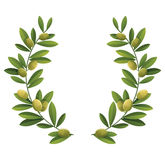 Olive wreath Royalty Free Stock Images