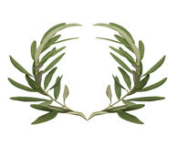 Olive wreath - the reward for the winners of the Olympic games in ancient Greece Stock Photos
