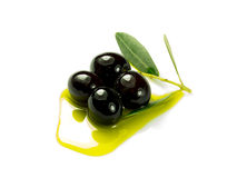 Olivee in the oil Royalty Free Stock Photos