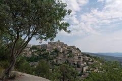 Oliveira em Gordes, França do sul Fotos de Stock Royalty Free