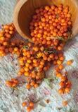 Olivello spinoso fresco su tessuto di tela Fotografia Stock