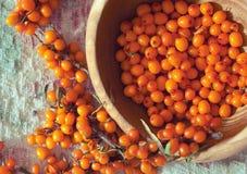 Olivello spinoso fresco su tessuto di tela Fotografie Stock