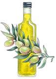 Olivenöl. Aquarellillustration Stockfotos