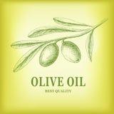 Olivenöl des Vektors Dekorativer Ölzweig Für Aufkleber Satz lizenzfreie abbildung