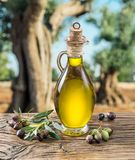 Olivenöl und Beeren sind auf dem Holztisch unter dem Olivenbaum stockbilder