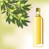 Olivenöl und Niederlassung auf abstraktem Hintergrund Stockbilder