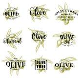 Olivenöl- und Niederlassungsikonen, Vektorbeschriftung lizenzfreie abbildung