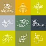 Olivenölikonen des Vektors und Logogestaltungselemente lizenzfreie abbildung