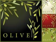 Oliven Stockfotografie