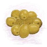 Oliven lizenzfreie abbildung