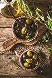 Oliven auf Zweig Stockbild