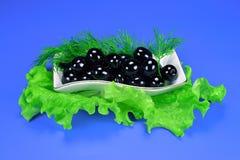 Oliven mit Dill und grünem Salat Lizenzfreie Stockbilder