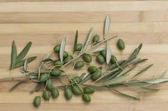 Oliven mit Niederlassung stockbilder